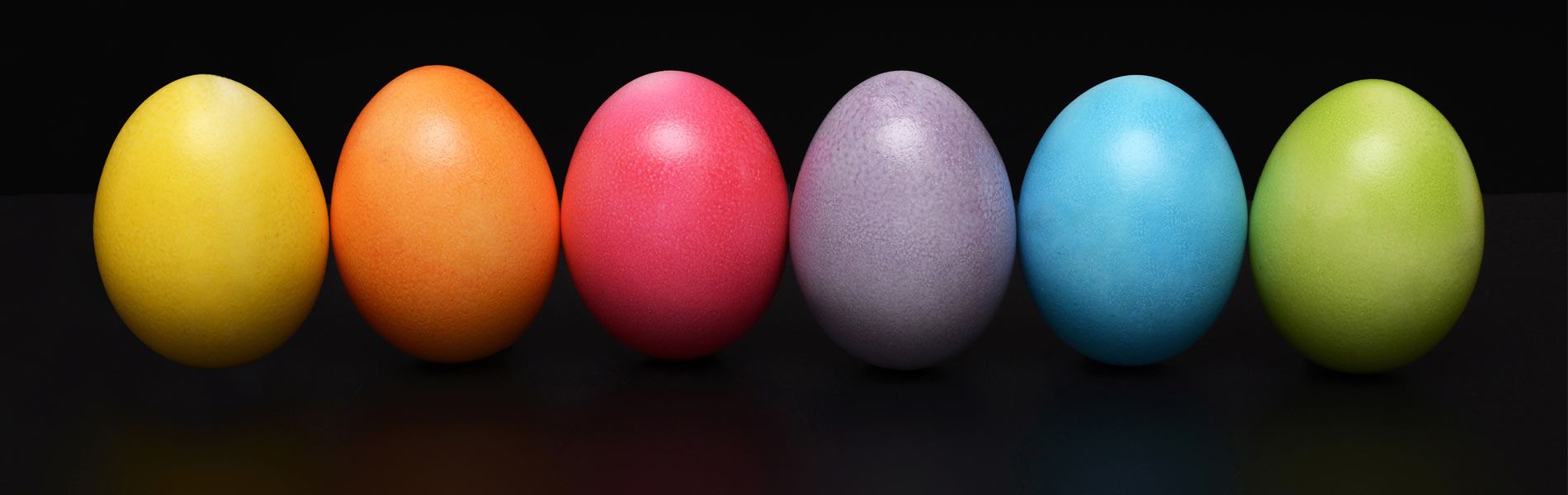 Colored Egg Banner
